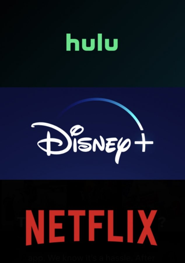 Netflix, Hulu, and Disney+?: How Streaming Services are Growing in Popularity