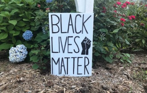 Sophia Vassalo has created lawn signs to fundraise for organizations aligned with Black Lives Matter