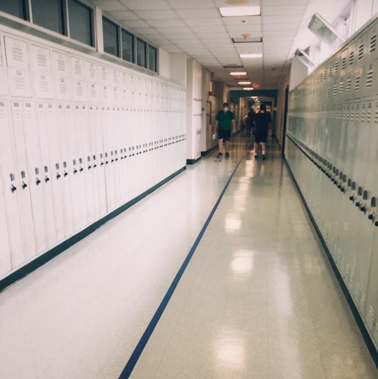 FLHS+freshmen+tour+the+hallways+during+oreintation.