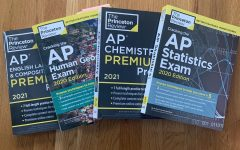 Finding Your Place in Advanced Placement Courses