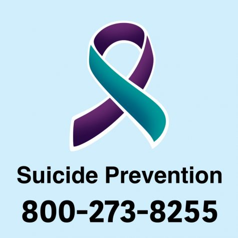 There are many organizations and hotlines that are able to help people struggling with mental illness, including the Suicide Prevention Hotline.